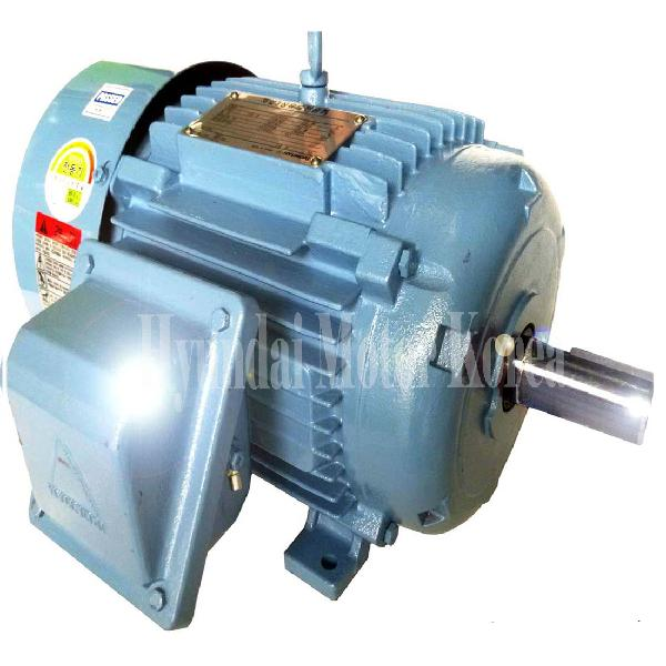 Hyundai Ac Induction Motor High Efficiency Electric Ip55 Square Cage Korea