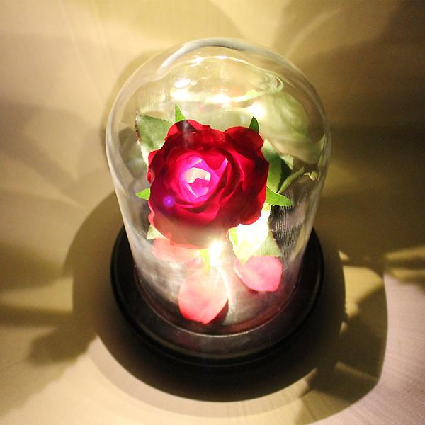 Beauty And The Rose LED F
