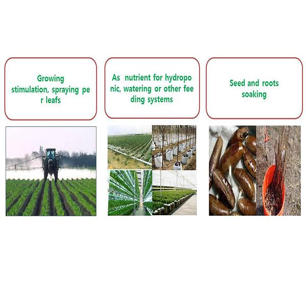 organic fertilizer use