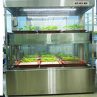 Ginseng Hydroponics cultivation room